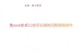 免root安卓11也可以用的闪照获取软件