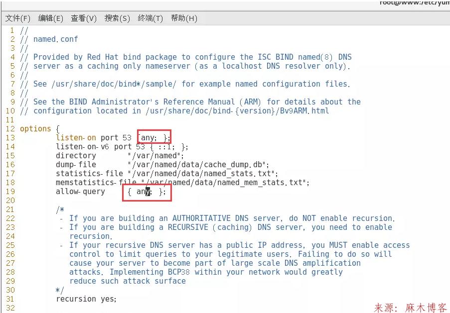 Linux安装BIND服务及配置主/从DNS服务器/缓存服务器第2张-麻木博客