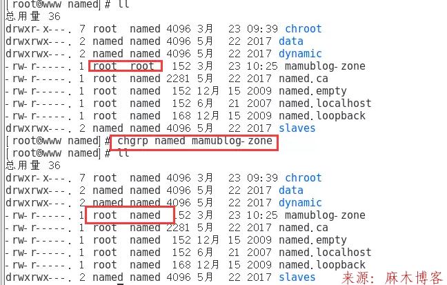 Linux安装BIND服务及配置主/从DNS服务器/缓存服务器第8张-麻木博客