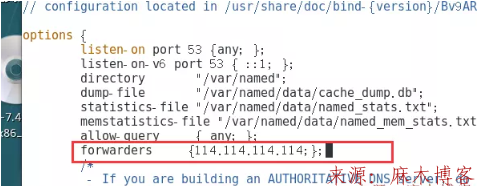 Linux安装BIND服务及配置主/从DNS服务器/缓存服务器第33张-麻木博客