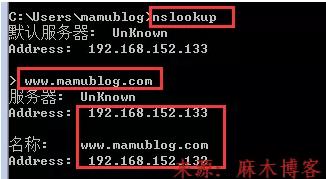 Linux安装BIND服务及配置主/从DNS服务器/缓存服务器第27张-麻木博客